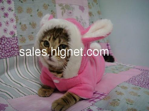 宠物衣服,猫咪狗狗都可以穿哦
