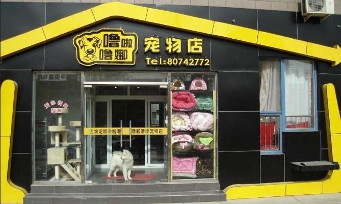 宠物店门头效果图 宠物店装修效果图 宠物店面效果图